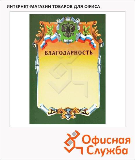 Благодарность А4, герб с триколором, зеленая рамка
