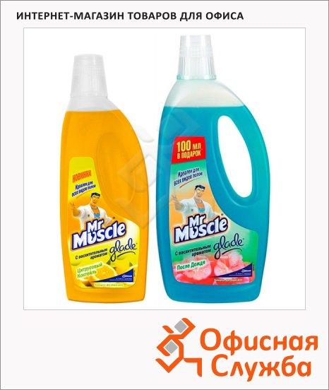 Универсальное чистящее средство Мистер Мускул, жидкость