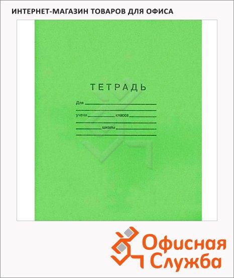 Тетрадь школьная Архбум зеленая, А5, в клетку, на скрепке, бумага