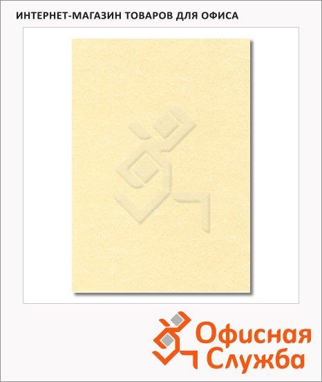 Дизайн-бумага Decadry Classic Collection Пергамент шампань фигурный с текстурой, А4, 95г/м2