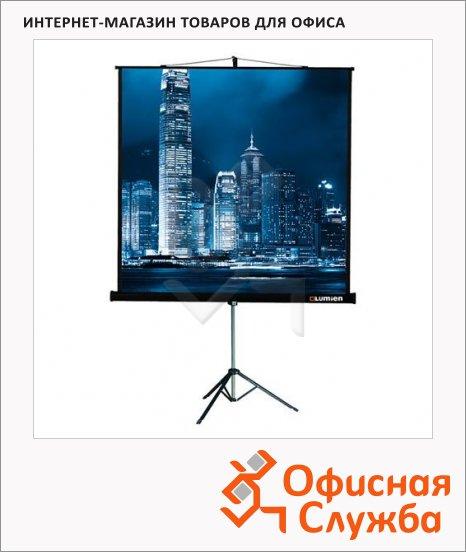 Экран для проектора мобильный Lumien Master View FiberGlas