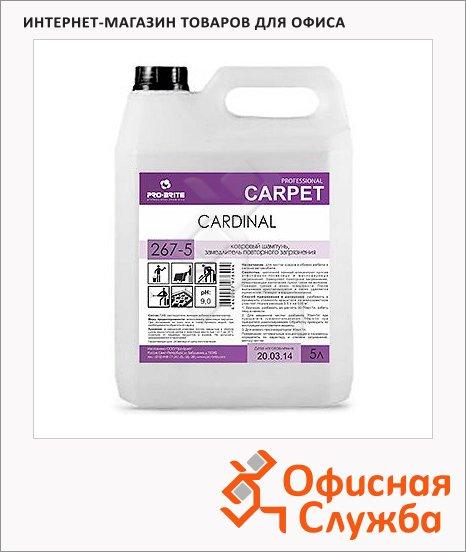 Чистящий шампунь Pro-Brite Cardinal 1л, для ковров, с замедлителем повторного загрязнения, 267-1