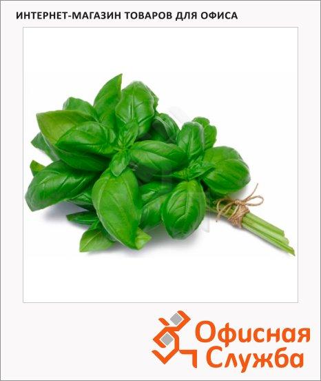Базилик зеленый, кг