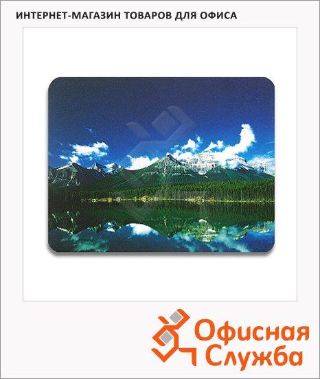 ������ ��� ���� ������ ����������� Profioffice MPF5 �������, 320��x270��x5��