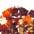 Чай Althaus Kiwi Colada, фруктовый, листовой, 200г