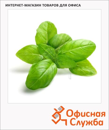 фото: Базилик Зеленьторг зеленый 50г