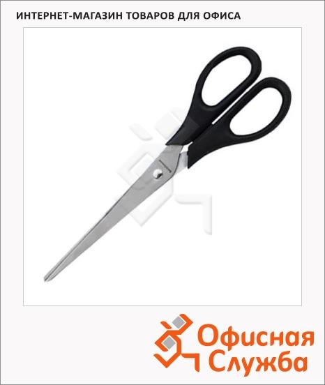 фото: Ножницы Erich Krause Standard 19см черные, 21881