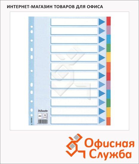 фото: Цветовой разделитель листов Esselte 12 разделов А4, 100194