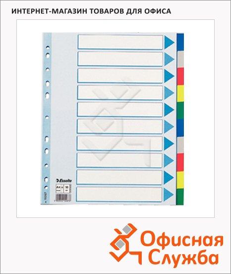 фото: Цветовой разделитель листов Esselte Maxi 10 разделов А4+, 15267