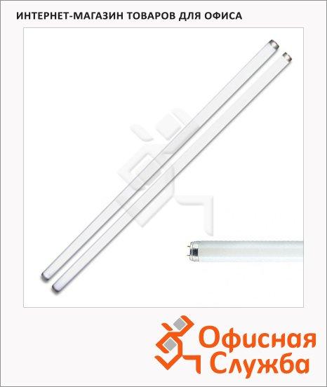Лампа люминесцентная Philips TL-D 18W/54 18Вт, G13, 590мм, 25шт/уп, холодный белый
