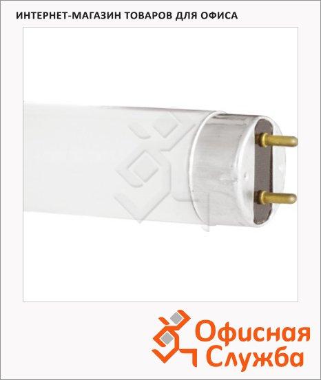 фото: Лампа люминесцентная Philips TL-D 36W/54 36Вт G13, трубка, 25шт/уп, 4100К, холодный белый свет