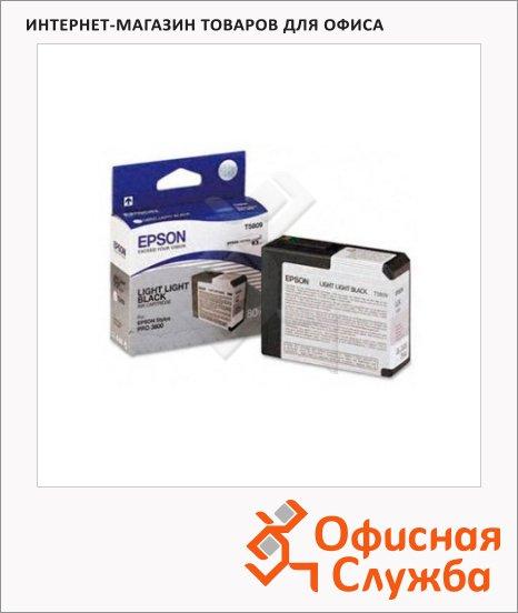 фото: Картридж струйный Epson C13 T580900 светло-серый