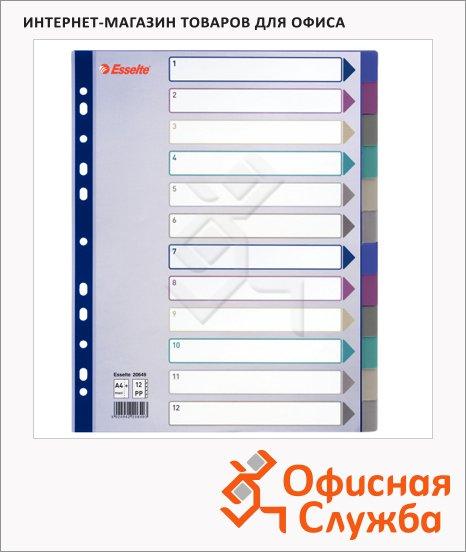 Цветовой разделитель листов Esselte Maxi 12 разделов, А4+, 20649