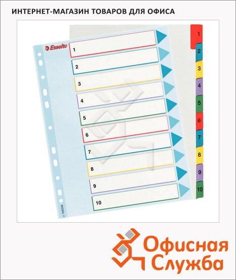 Цифровой разделитель листов Esselte Maxi 10 разделов, А4+, 100208