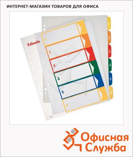 Цифровой разделитель листов Esselte Maxi 6 разделов, А4+, 100212