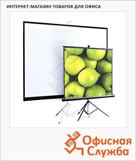 Экран для проектора мобильный Screenmedia Appolo-T 200х200см, на треноге