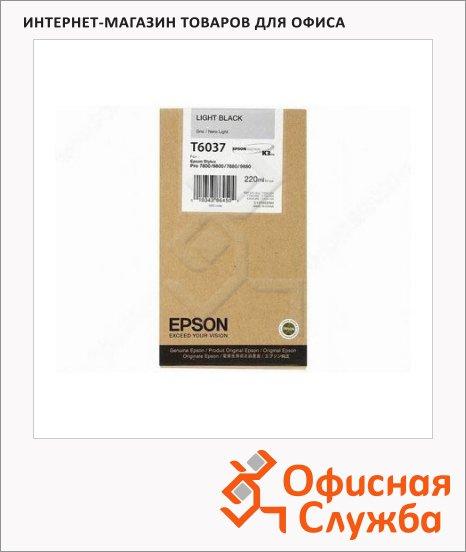 фото: Картриджи струйные Epson C13 T603900 светло-серый