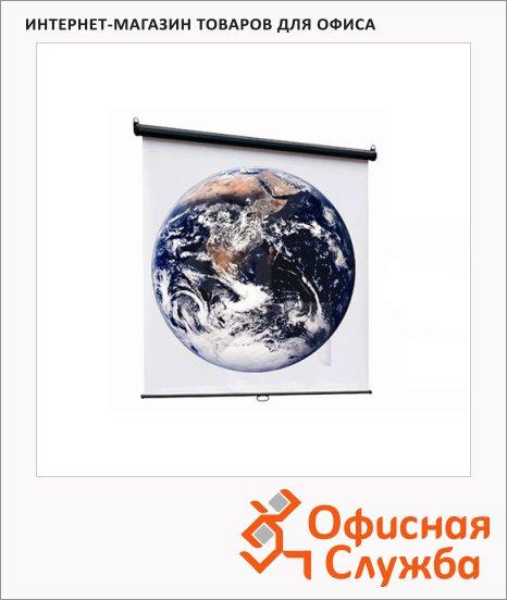 фото: Экран для проектора настенный Economy-P