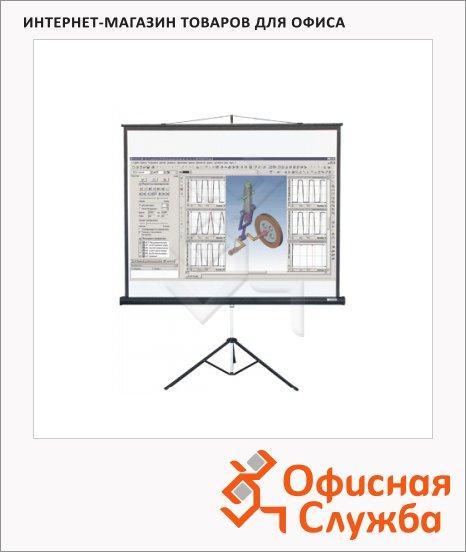 Экран для проектора мобильный Lumien Master View 153х203см, на треноге