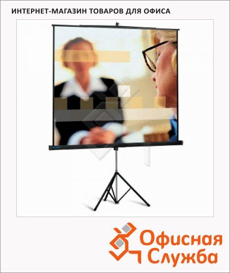 Экран для проектора мобильный Projecta 213х213см, на треноге
