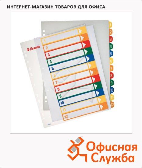 Цифровой разделитель листов Esselte Maxi 12 разделов, А4+, 100214