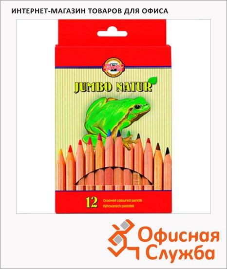 Набор цветных карандашей Koh-I-Noor Jumbo Natur 12 цветов, 2172N