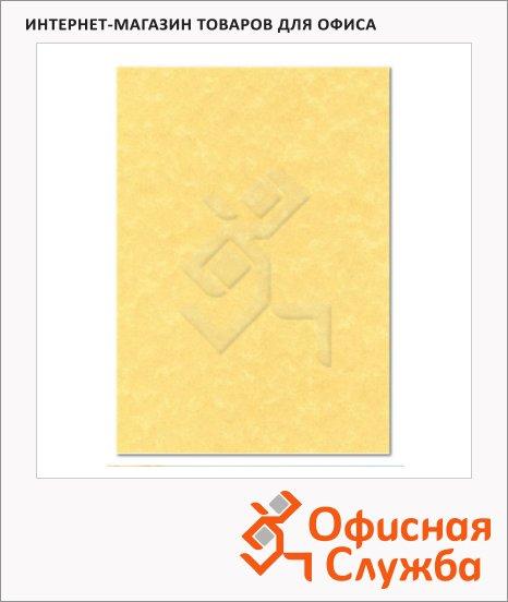 фото: Дизайн-бумага Corporate Line