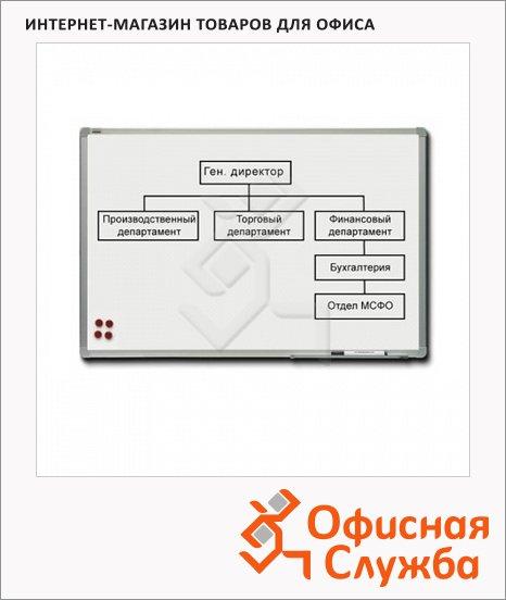 Доска магнитная маркерная 2x3 TSA 1890 90х180см, белая, лаковая, алюминиевая рама