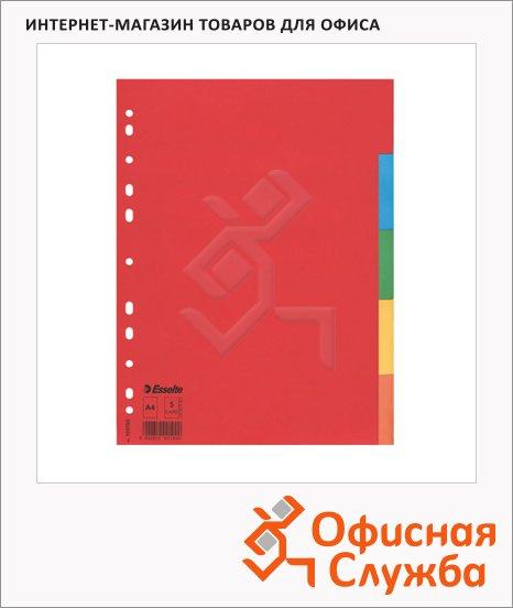 фото: Цветовой разделитель листов Esselte 5 разделов А4, 100199