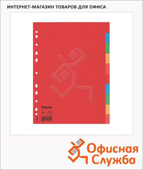 Цветовой разделитель листов Esselte 10 разделов, А4, 100201