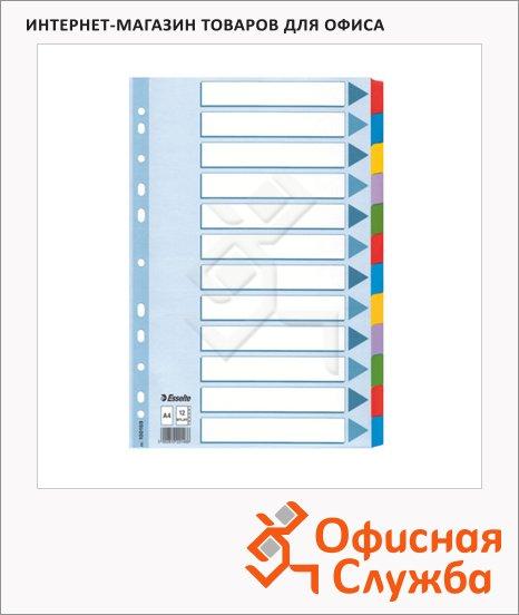 Цветовой разделитель листов Esselte Mylar 12 разделов, А4, 100169