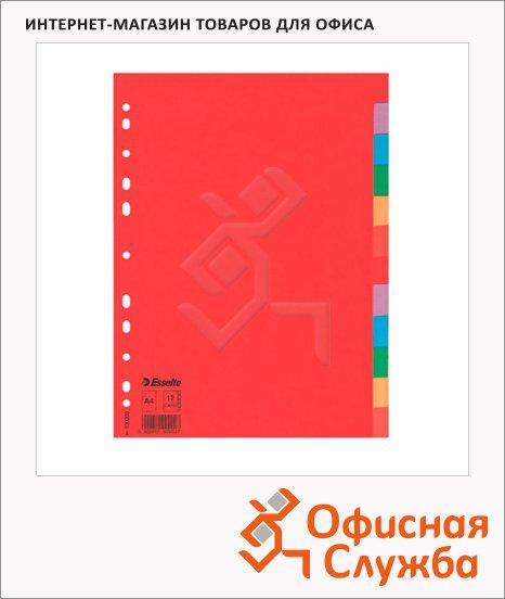 фото: Цветовой разделитель листов Esselte 12 разделов А4, 100202