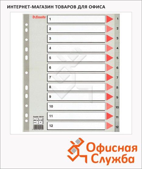 Цифровой разделитель листов Esselte Maxi 12 разделов, А4+, 100125