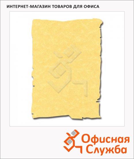 Дизайн-бумага Decadry Corporate Line Золотой пергамент фигурный, А4, 95г/м2, 10 листов