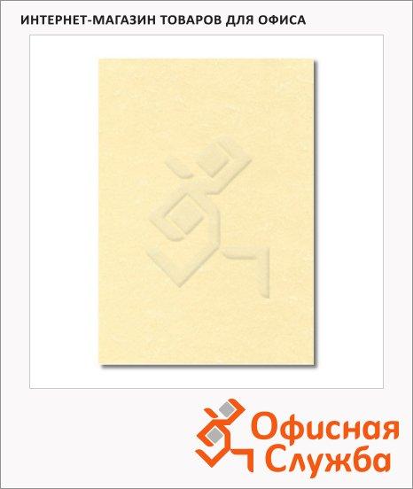фото: Дизайн-бумага Decadry Classic Collection Пергамент шампань фигурный с текстурой А4, 95г/м2, 100 листов