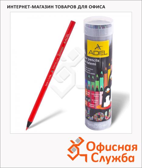 Набор цветных карандашей Adel Colour 24 цвета