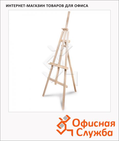 Мольберт напольный Невская Палитра Ученический 66х182х88см, угол 50-90°