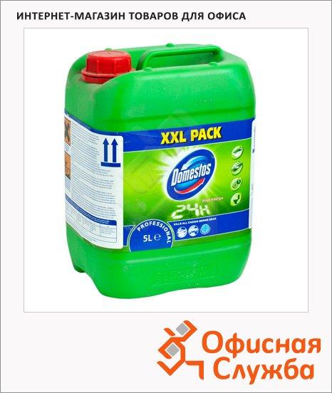 Чистящее средство Domestos Professional 5л, гель