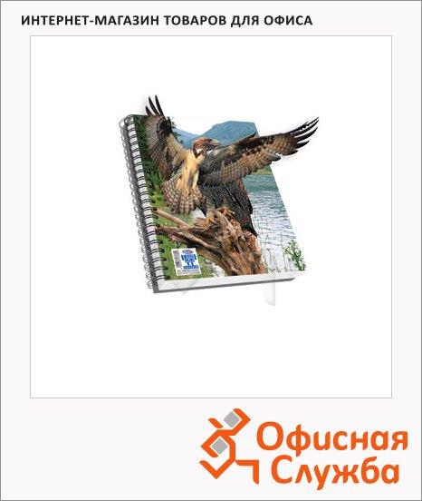 Тетрадь общая Skag 3D орел, ламинированный картон