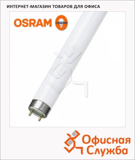Лампа люминесцентная Osram L 18W/765 18Вт, G13, 600мм, 25шт/уп, холодный белый