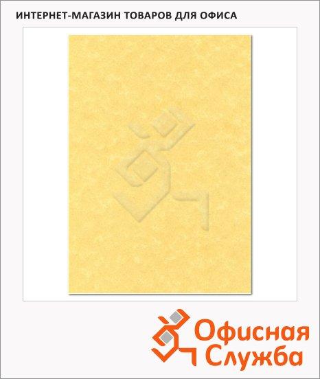 фото: Дизайн-бумага Decadry Corporate Line Золотой пергамент с текстурой А4, 165г/м2, 15 листов