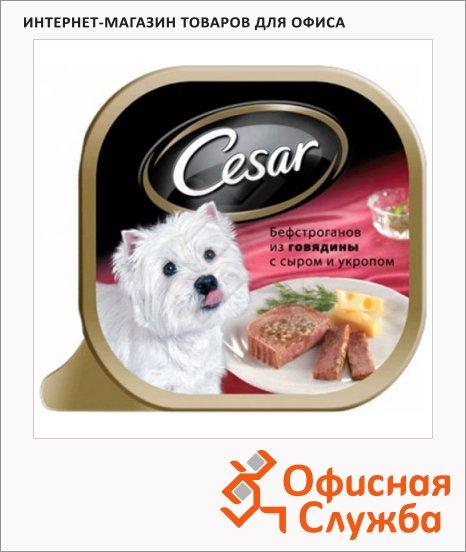 фото: Консервы для собак Cesar бефстроганов из говядины с сыром и укропом 100г