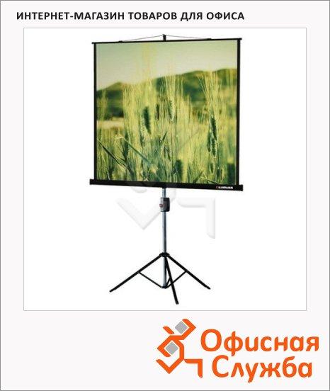 фото: Экран для проектора мобильный Lumien Master View 153х153см на треноге