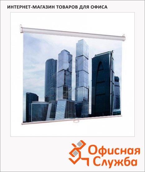 Экран для проектора настенный Lumien 200х200см