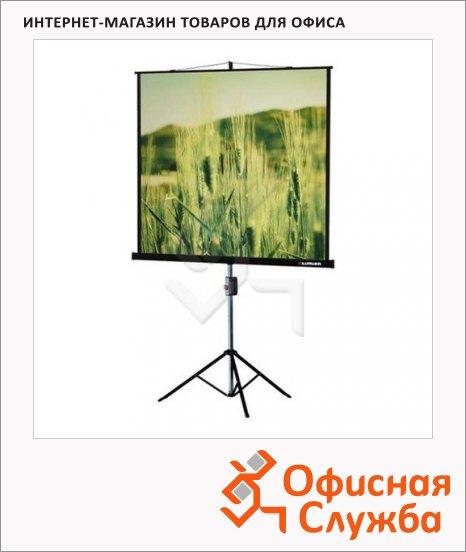 фото: Экран на штативе Lumien Master View LMV-100113, 165x220