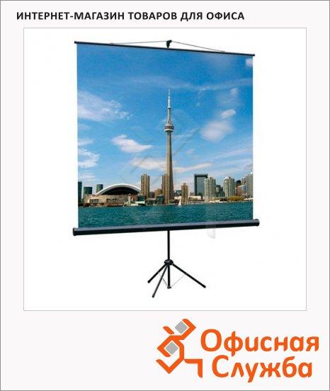 фото: Экран для проектора мобильный Lumien Eco View 160х160см на треноге
