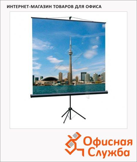 фото: Экран для проектора мобильный Lumien Eco View 180х180см на треноге