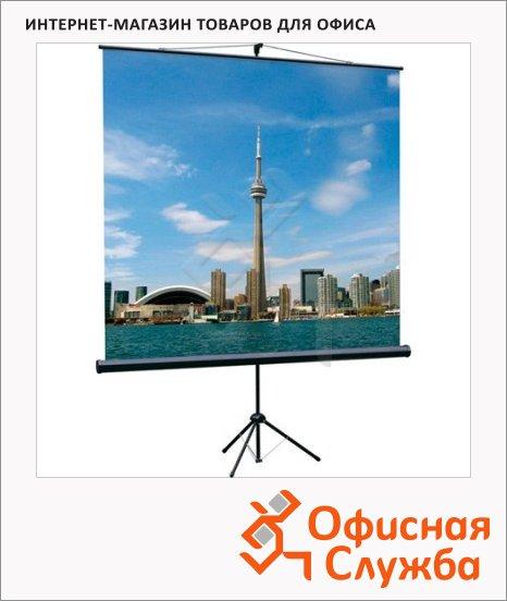 Экран для проектора мобильный Lumien Eco View 200x200см, на треноге