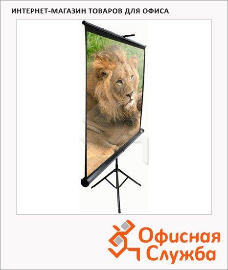 фото: Экран для проектора мобильный Elite Screens 152x152cм на треноге