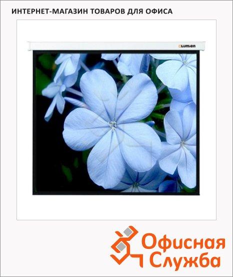 Экран для проектора настенный Lumien Master Picture LMP-100107 305х305см